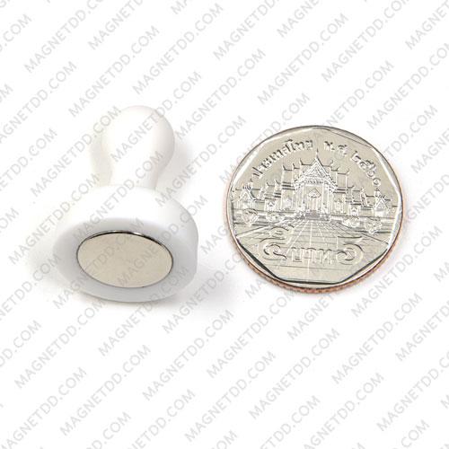 พินแม่เหล็กแรงสูง Magnetic Push Pins 19mm x 25mm สีขาว แม่เหล็กถาวรนีโอไดเมี่ยม NdFeB (Neodymium)