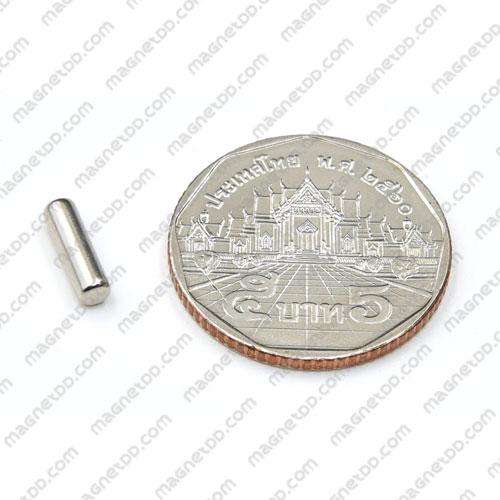 แม่เหล็กแรงสูง Neodymium ขนาด 3mm x 10mm แม่เหล็กถาวรนีโอไดเมี่ยม NdFeB (Neodymium)
