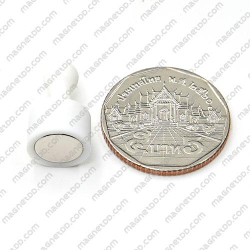 พินแม่เหล็กแรงสูง Magnetic Push Pins 12mm x 20mm สีขาว แม่เหล็กถาวรนีโอไดเมี่ยม NdFeB (Neodymium)